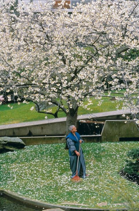 Jean-Marie Finot, naval architect, as a Japanese gardener
